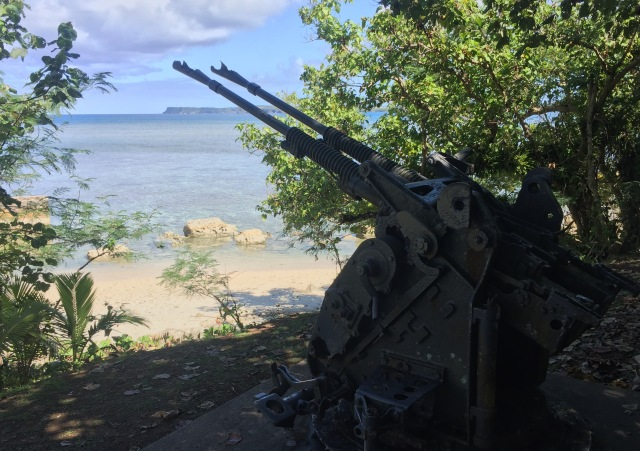 Day 12 - Japanese Anti-Aircraft Gun Guarding Agat Beach