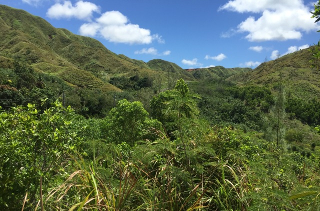 Dat 12 - Rugged Jungle Mountains Above the Ridgeline View of Agat Beach.
