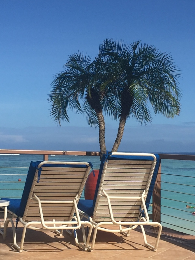 Day 13 - After Walking Around the Whole Beachfront Complex, I Settled into a Lounge Chair Under a Twin Palm.