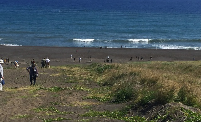 Day 11B - American Tourists Walking Down to the Beach to Collect Their Sample of Black Lava Ash.